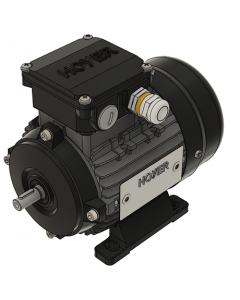 IE2 Marine motor 0,29 kW 440VY 60 Hz 3600 RPM 3220631108