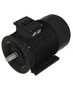 IE3 Electric motor 45,0 kW 400VD/690VY 50 Hz 3000 RPM 5522250400